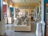 Archäologisches Museum der Universität