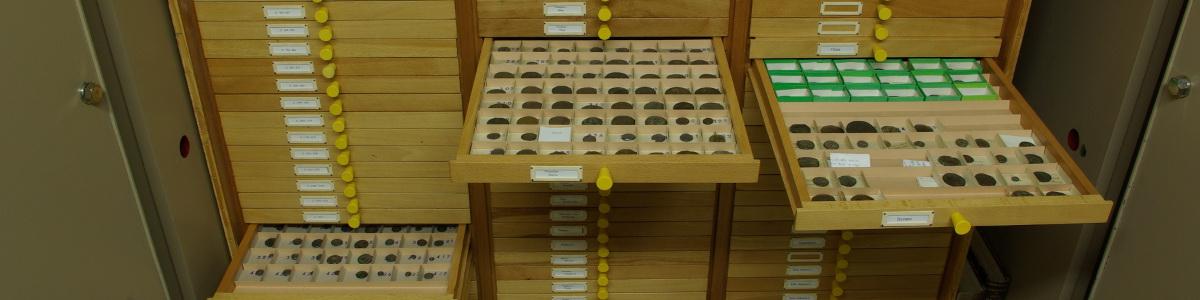 Vorschaubild: Sammlung antiker Münzen